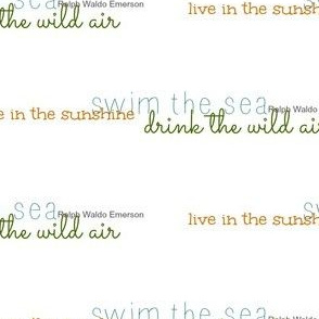 drink the wild air quote