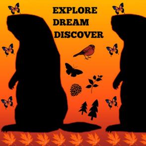 Explore, Dream, Discover ...