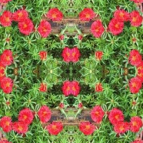 Wooden Steps with Rose Moss