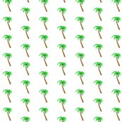 Rrrrrpalm_tree_shop_thumb