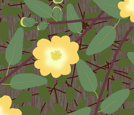 buttercup_bush_2_changed_yellow_dark