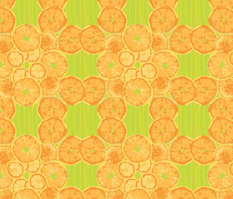 Citrus_fruit.ai_shop_preview