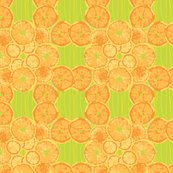 Citrus_fruit.ai_shop_thumb