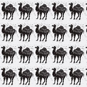 Black Camel