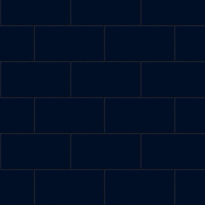 subway tile - persian blue