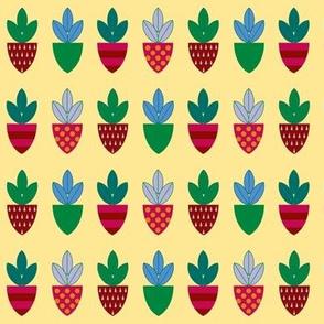 Strawberry Shields - Dark Berries