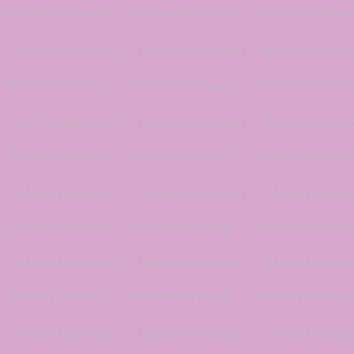 Rapunzel Bodice Flat