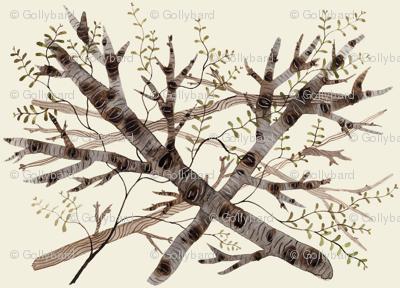 thicket natural