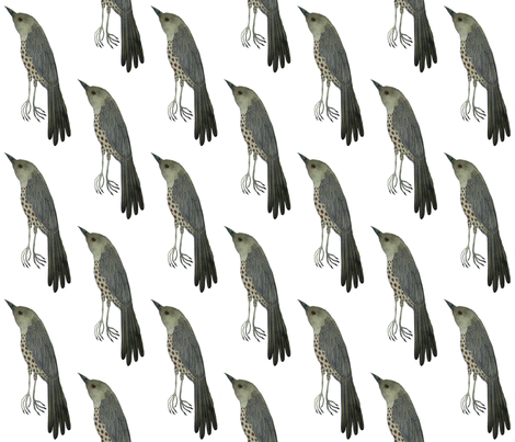 wood thrush west fabric by gollybard on Spoonflower - custom fabric