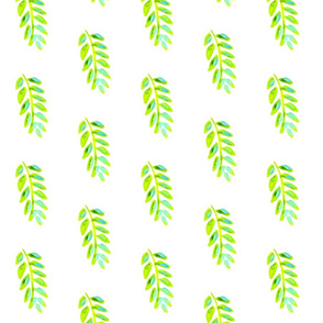 Lime leaves - small(er)
