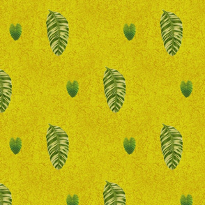Leaves89