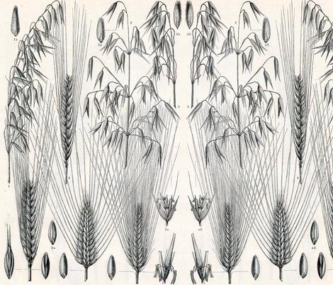 wheat_heads fabric by capael on Spoonflower - custom fabric