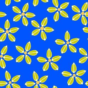 Citrus limes_blue-ed