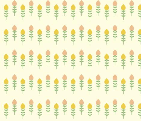 Tulips - Mustard Blush
