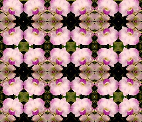Dendrobium-orchid2-2007cr1 fabric by tat05 on Spoonflower - custom fabric