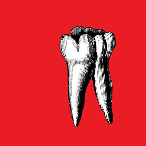 red_big_tooth
