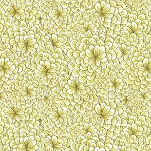 Creme Chrysanthemum