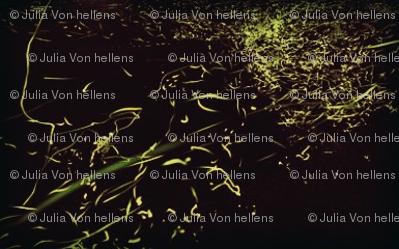 Juliasfirefly