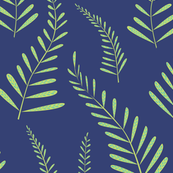 Ferns navy