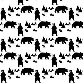 geo_bear