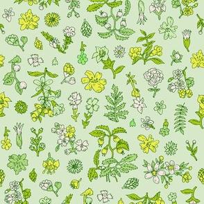 Exploded Flower Garden | Green/Yellow