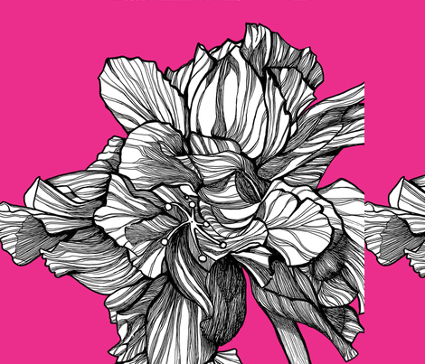 HibiscusLine_PillowFabric_Fuschia fabric by brownwilliam_llc on Spoonflower - custom fabric