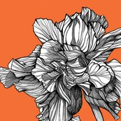 Hibiscusline_pillowfabric_tangerine_shop_thumb