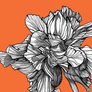 HibiscusLine_PillowFabric_Tangerine