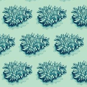 pinecone print  (indigo/teal)