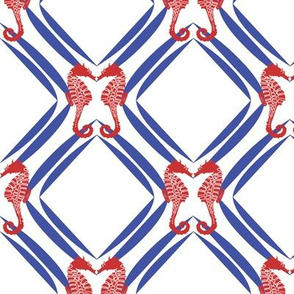 Seahorse Geometry