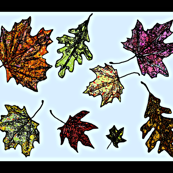 Fall Leaves Kitchen Towel on light blue