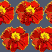 Marigold_cutout_and_posterized