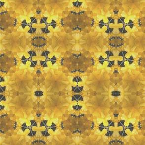 YellowtreesII