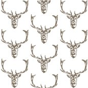 Rrrwild_welsh_stag_shop_thumb