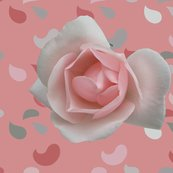 Rpaisley_rose_pink_shop_thumb