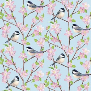 Chickadees and Apple Blossom