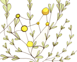 Rsun_molecule_plant_thumb