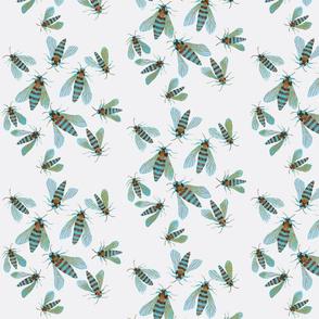 hornet moths gris