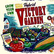 hybrid victory garden