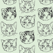 Cute Cats | Mint
