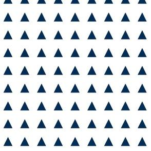triangle navy blue