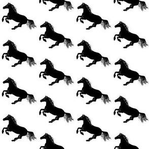 Black Pony on White, Bias 2