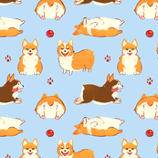 Corgis Galore!