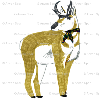 antelope swatch