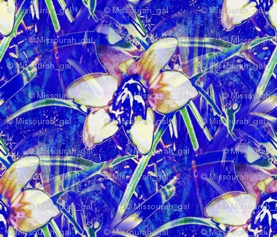 Blue Autumn Crocus 10x9