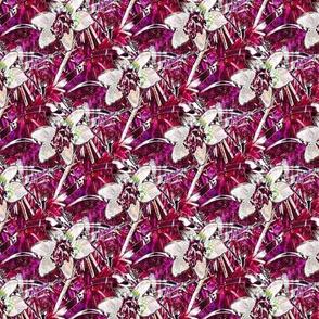 Fuchsia Autumn Crocus