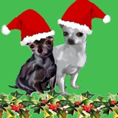 R2330893_chihuahua_christmas_one_shop_thumb