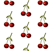 Cherries - Botanical Print