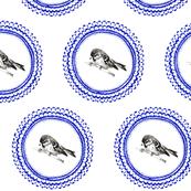 Doily Bird