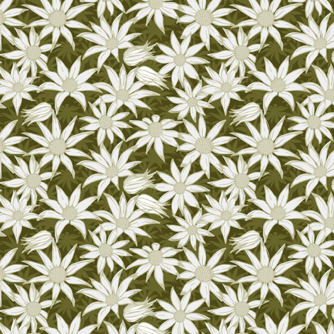 Flannel flowers for Maude fabric by bippidiiboppidii on Spoonflower - custom fabric